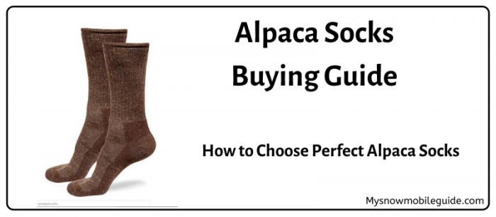 How to Buy Alpaca Socs