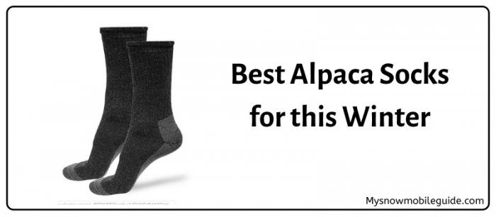 Best Alpaca Socks 2019